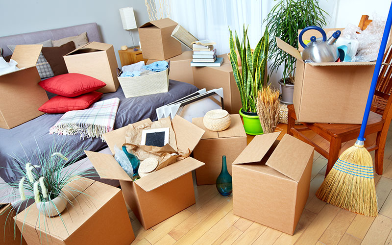 APPIC Internship Relocation: 10 Ways to Make it Easier